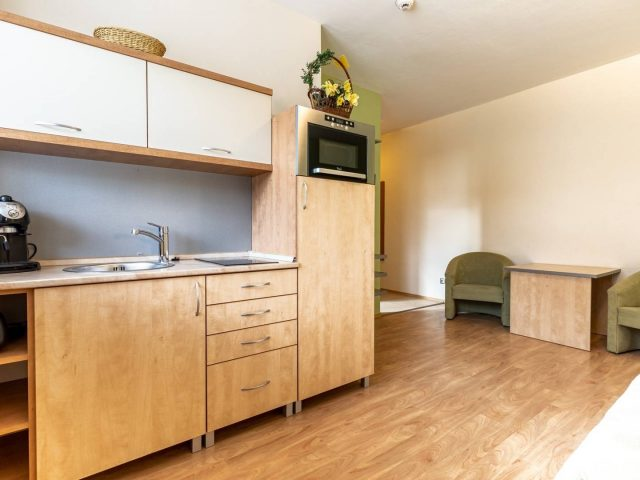 1 izbový tehlový byt (41 m2)  , KOŠICE-JUH, Topoľová ulica, NA PREDAJ